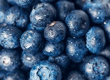 Upoznajte Acai Berry – najtraženije voće iz Južne Amerike lekovitog dejstva